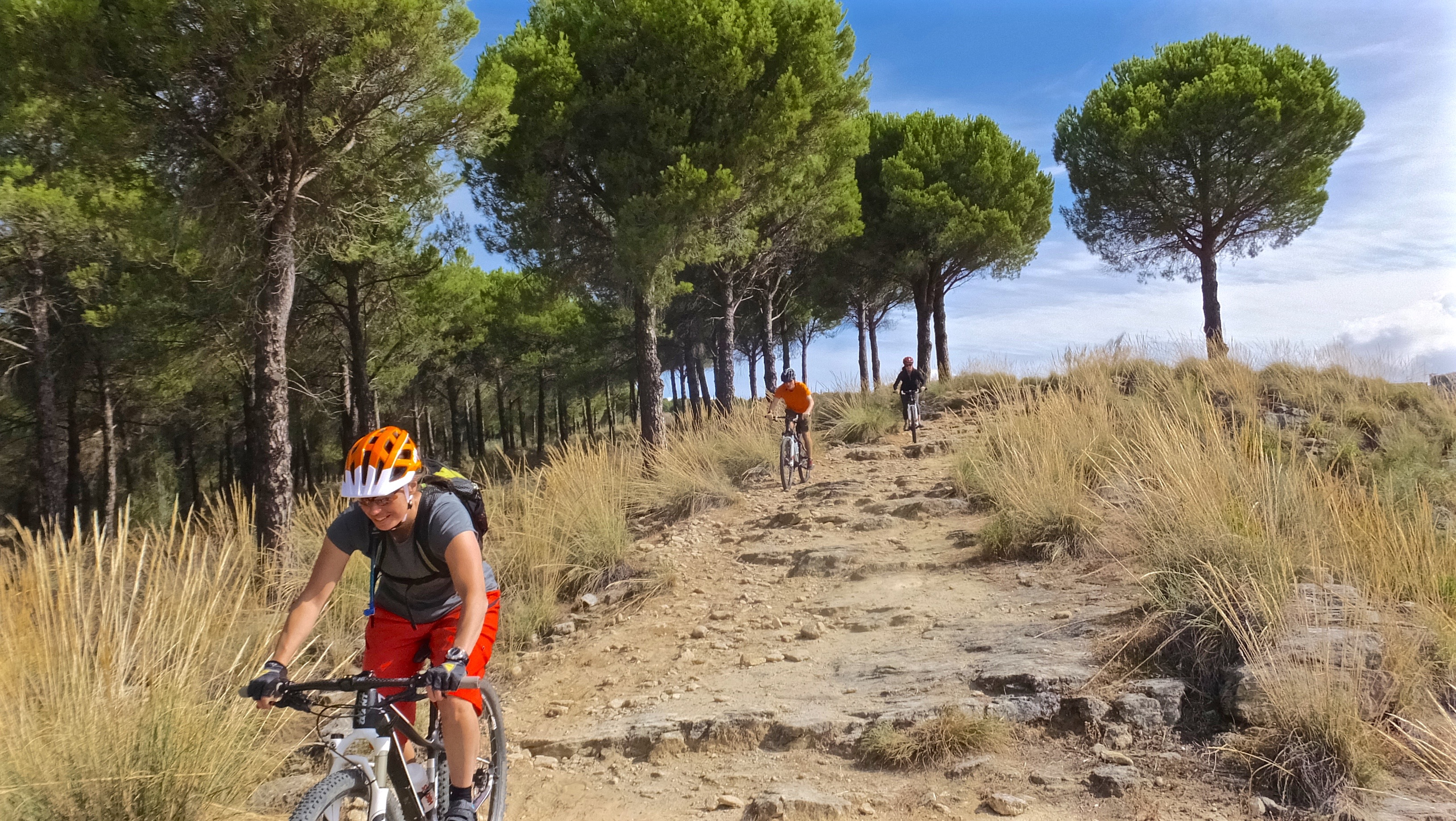 Christmas New Year mountain bike holiday